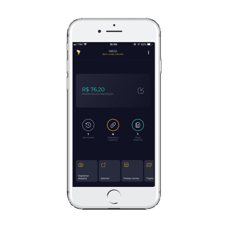 pay track telas com saldos e informações do usuário
